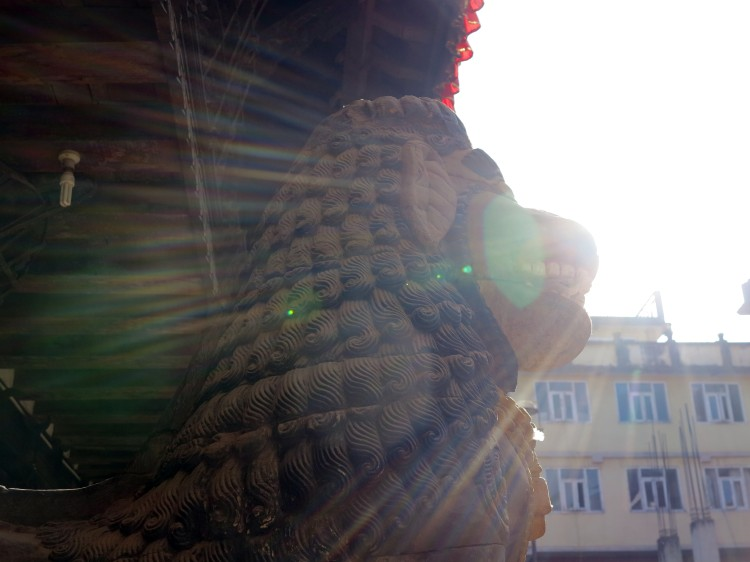 patan-lion-soleil