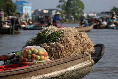 viet-can-to-marche-details-3