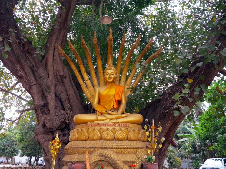 laos-luang-prabang-buddha-nagga