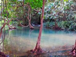 laos-luang-prabang-kuang-si-falls-17
