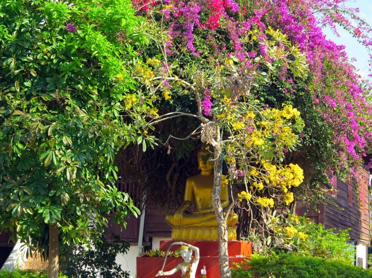 laos-luang-prabang-temple-10