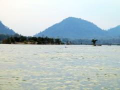 laos-4000-iles-boat-dauphins-2