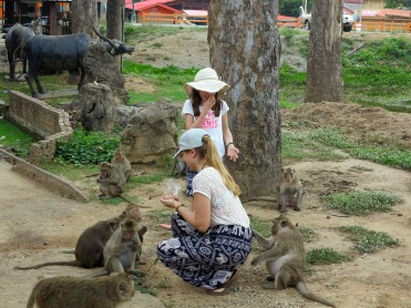 thai-ayu-monkey-1