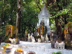 thai-chiang-mai-loop-kew-mae-pan-14