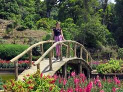 thai-chiang-mai-pagode-loulou-1