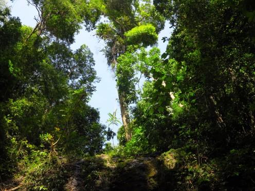 thai-ko-lanta-waterfall-6