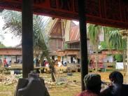 indo-sulawesi-tanah-toraja-enterrement-3