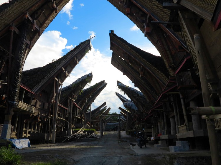 indo-sulawesi-tanah-toraja-maison-2