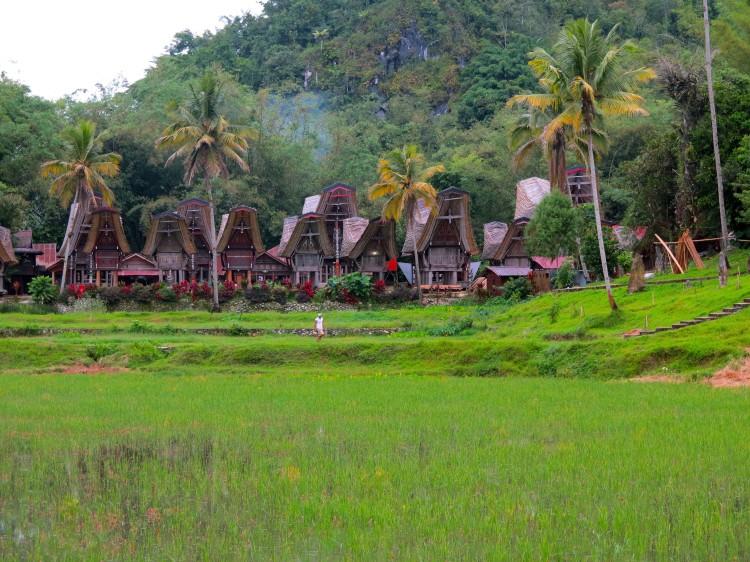 indo-sulawesi-tanah-toraja-village-1