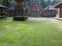 indo-bali-ubud-monkey-temple-5