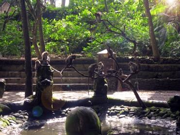 indo-bali-ubud-monkey-temple-7